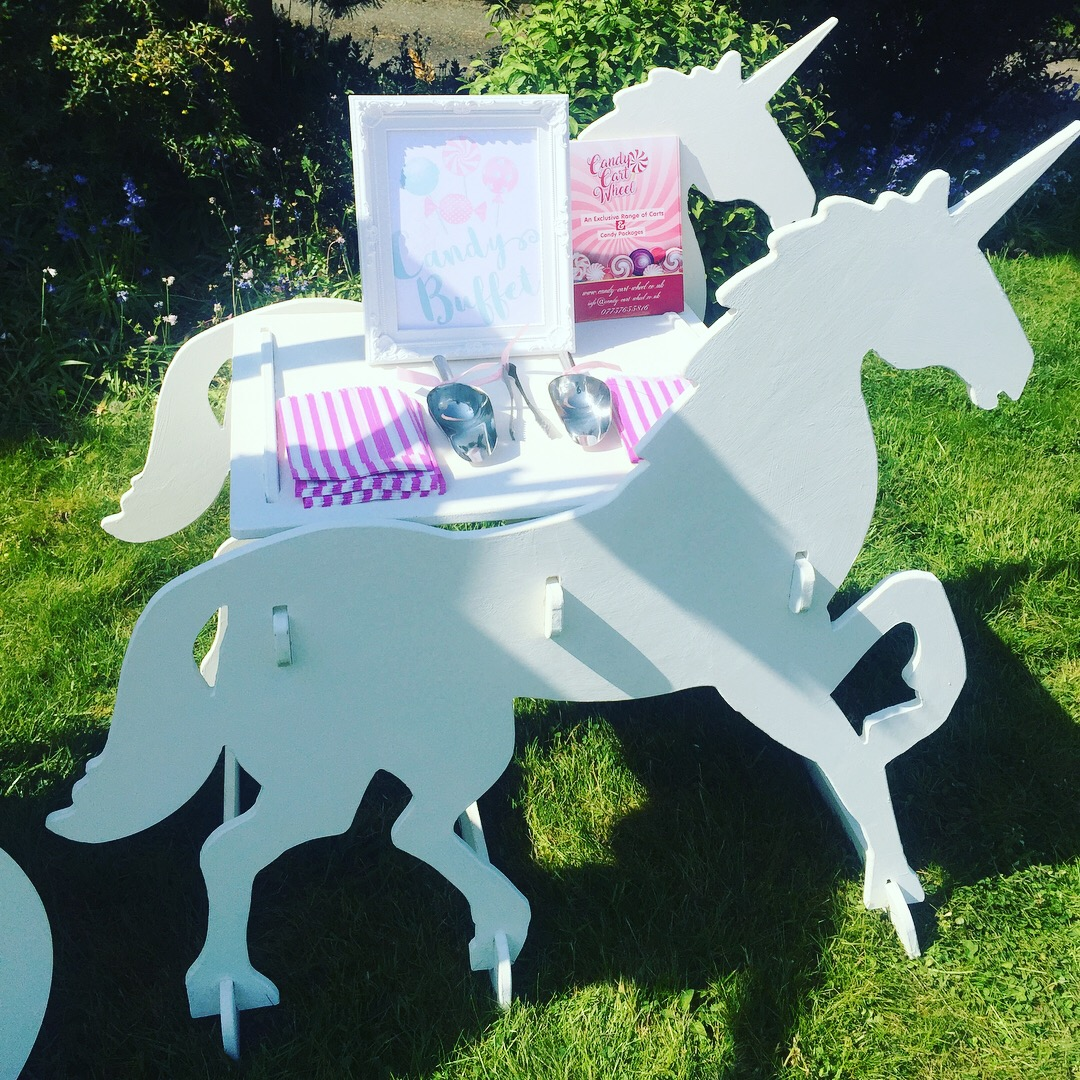 Unicorn Carriage Garden Party