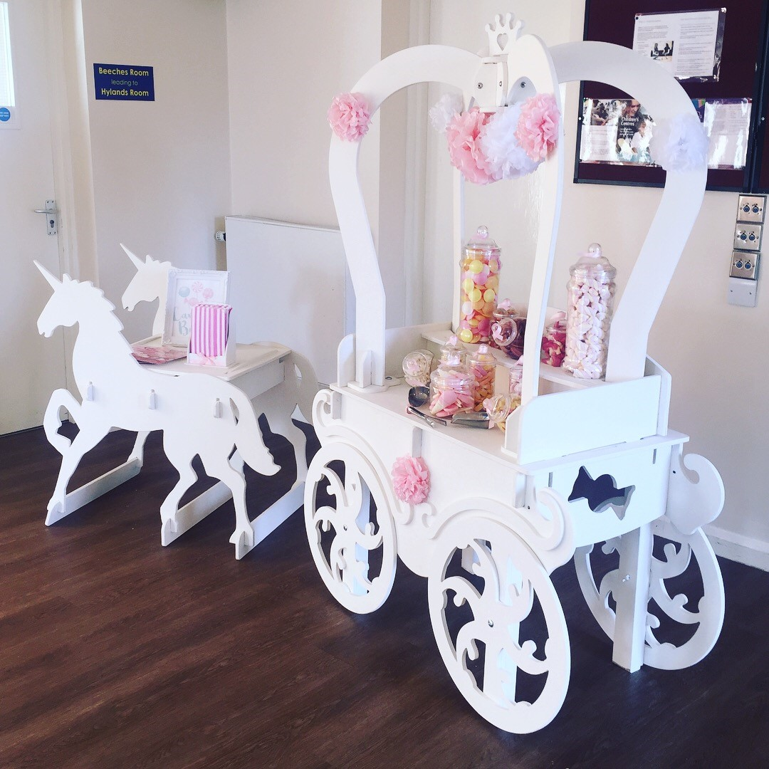 Unicorn carriage - 10th Birthday Party